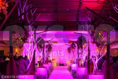 Peter & Axa Wedding (8)